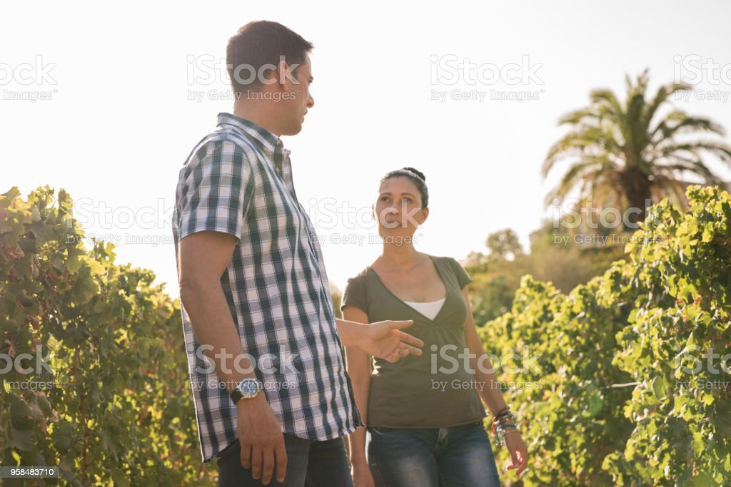 A couple talking to each other in a vineyard stock photo