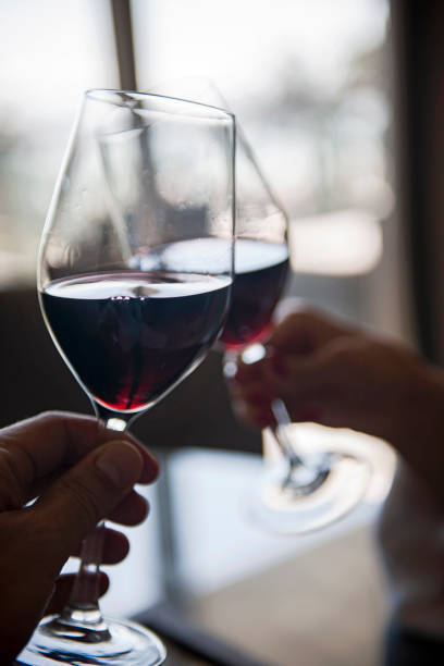 Couple toasting with red wine stock photo