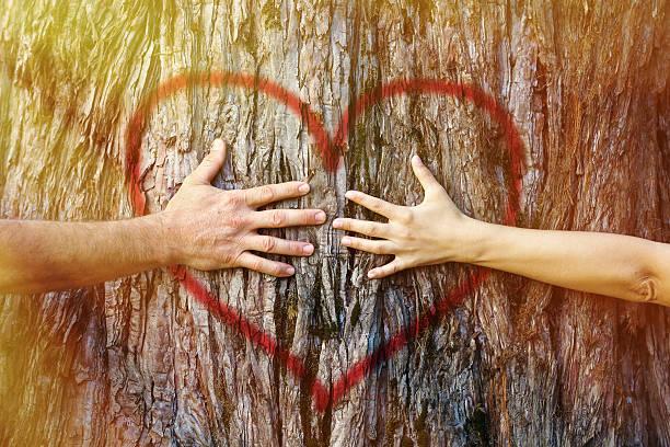 Couple touching heart in sunlight stock photo