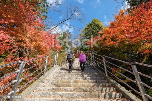 istock Couple tourists are walking up to the steep footpath with maple vibrant in autumn 1078140544