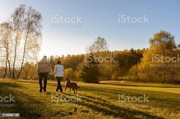 Couple walk dog autumn sunset countryside meadow picture id516986199?b=1&k=6&m=516986199&s=612x612&h=tqd0e0pueiqakas7wdbjbbqe6i8wqt cevthew1venw=