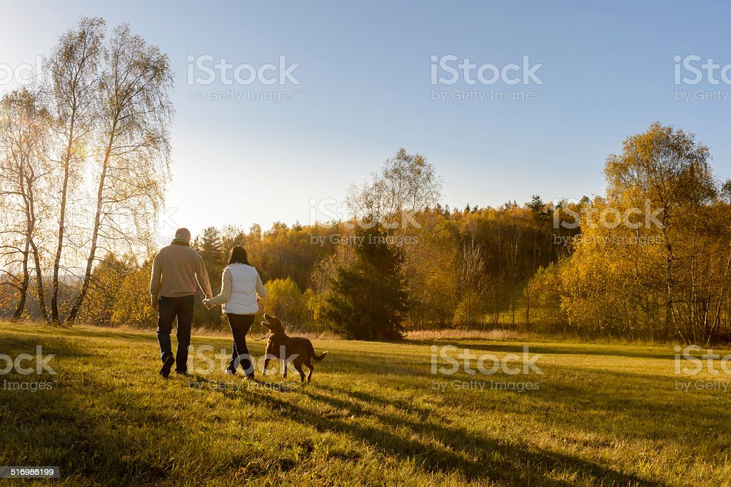 Couple walk dog autumn sunset countryside meadow stock photo