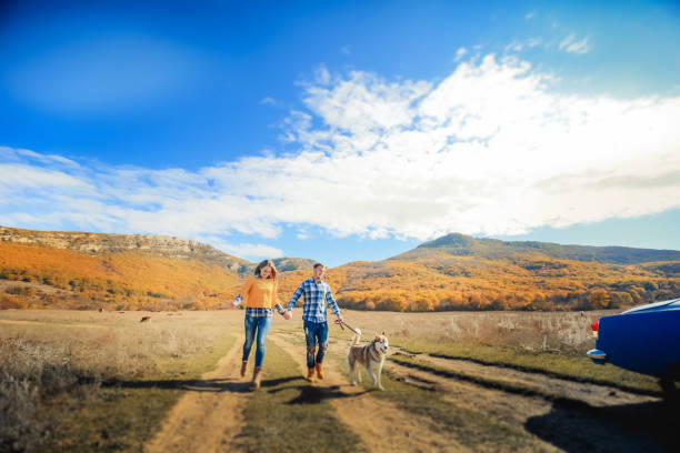 Couple walk retriever dog autumn sunset countryside meadow holding picture id1130717745?b=1&k=6&m=1130717745&s=612x612&w=0&h=iywv  pypjjwh5yzx7bhezpgv rd zbl7w8kyisx0wk=