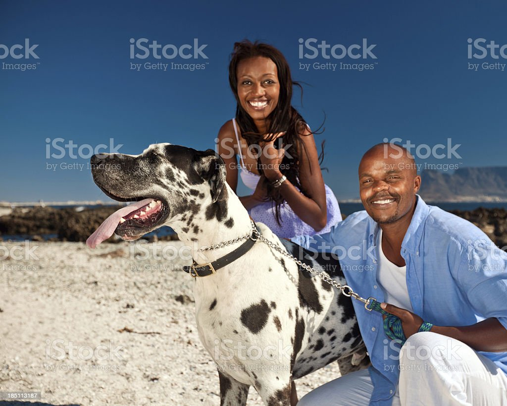 Couple walking a dog Cute african american couple walking a dog on the costline. Adult Stock Photo