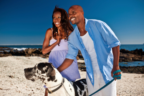 Couple Walking A Dog Stock Photo - Download Image Now
