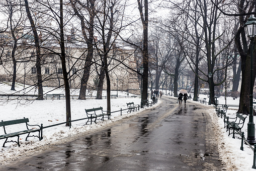 couple walking along path surrounded by trees, in winter, carrying a bag. krakow, poland