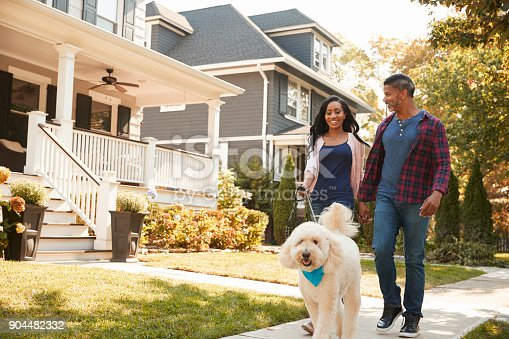 istock Couple Walking Dog Along Suburban Street 904482332
