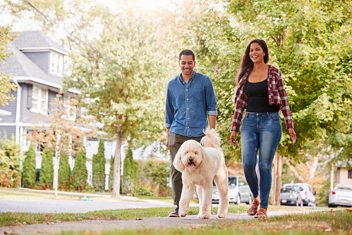 Couple Walking Dog Along Suburban Street