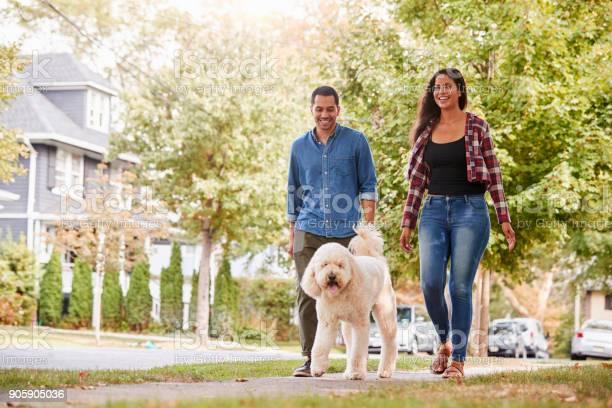 Couple walking dog along suburban street picture id905905036?b=1&k=6&m=905905036&s=612x612&h=pyhqocjiy28txcyp046uxnoprwl46iifgcfg9yjgjq0=