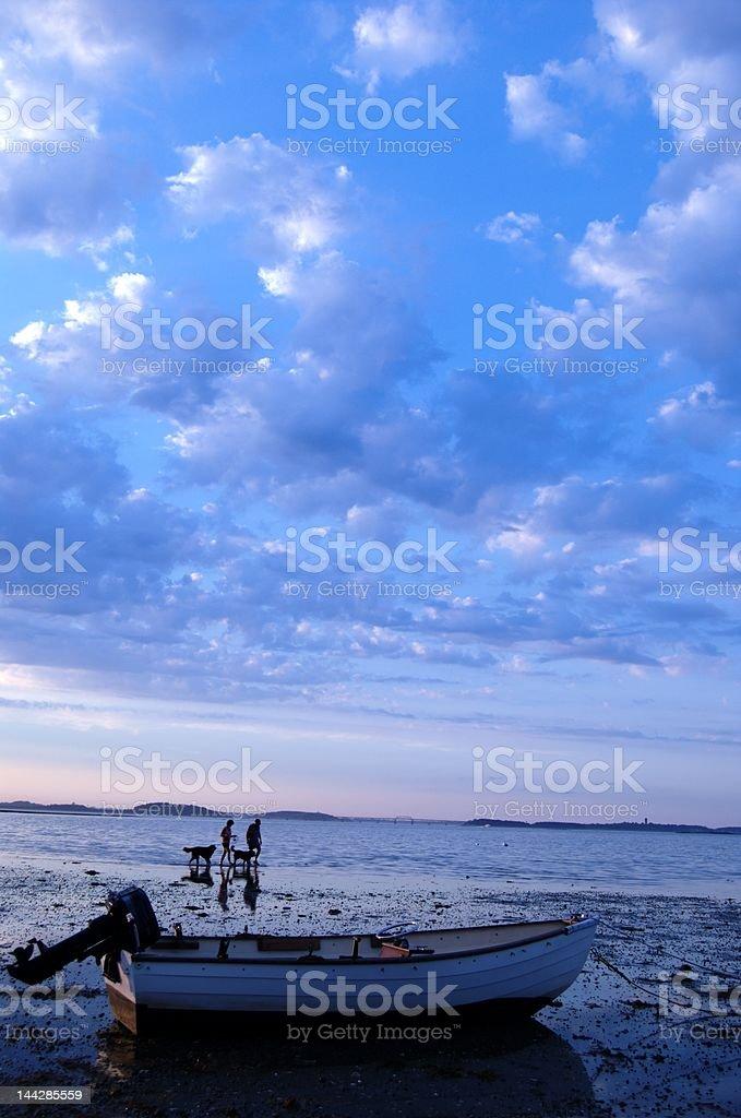 Couple Walking Dog On Beach royalty-free stock photo