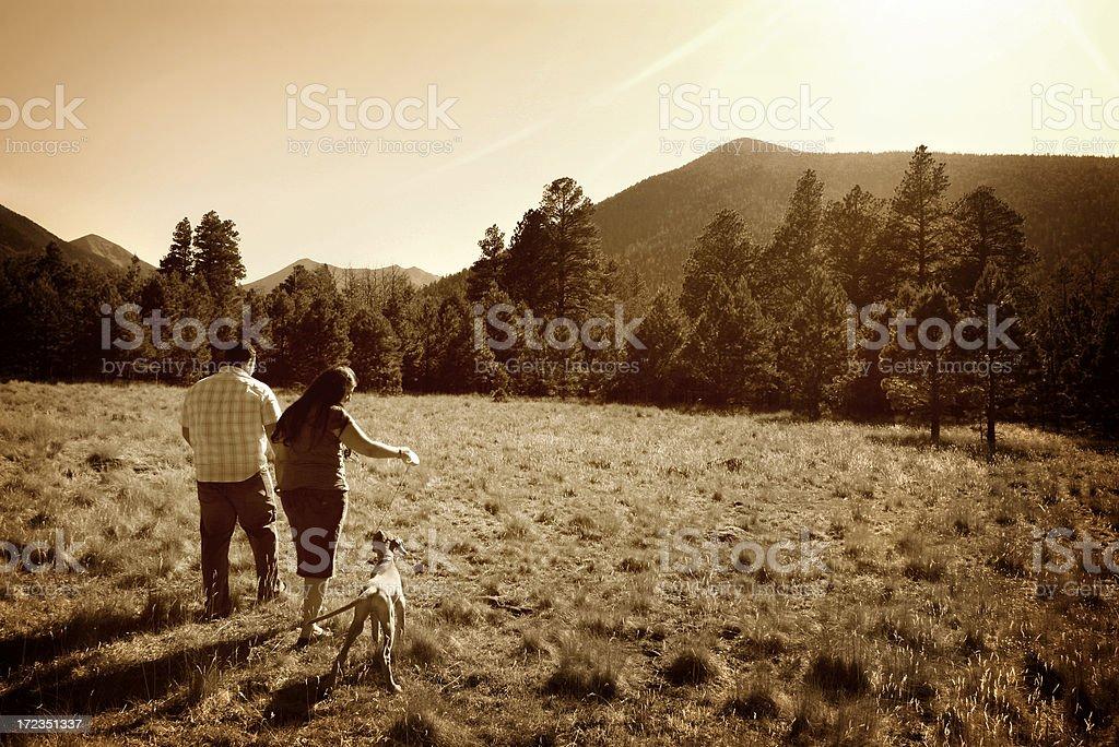 Couple Walking Dog through meadow royalty-free stock photo