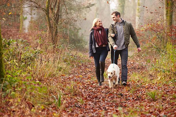 couple walking dog through winter woodland - hund skog bildbanksfoton och bilder