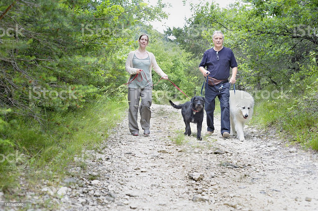 Couple walking dogs in forest stock photo