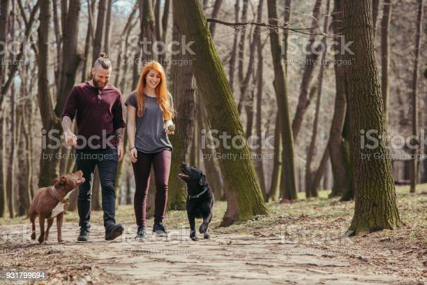Couple walking their dogs picture id931799694?b=1&k=6&m=931799694&s=612x612&h=glqbeg4c8ipllmrv4szr3lby22znjy1cgnyqwo1i4vs=