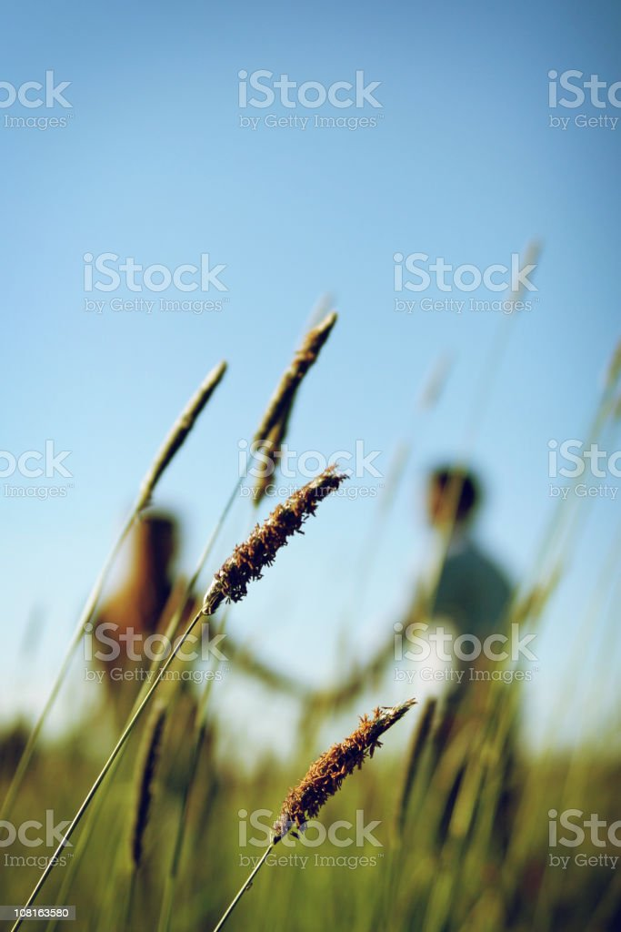 Couple Walking Through Field Holding Hands royalty-free stock photo