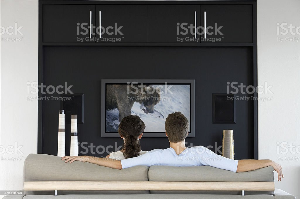Couple Watching Nature Documentary on Television stock photo