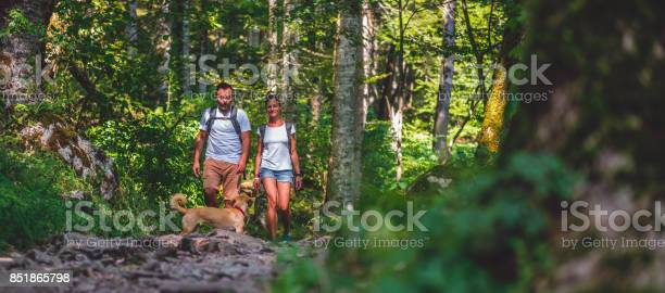 Couple with a dog hiking in forest picture id851865798?b=1&k=6&m=851865798&s=612x612&h=hjzo6wzddpxsw qxc0axgffej7xjcnlu upuhetwmly=