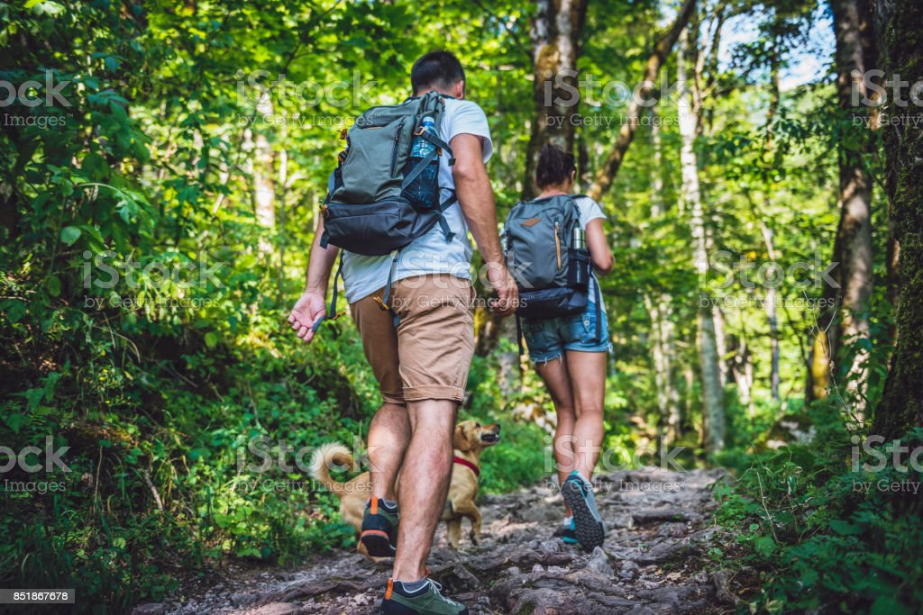 Couple with a dog hiking in forest stock photo