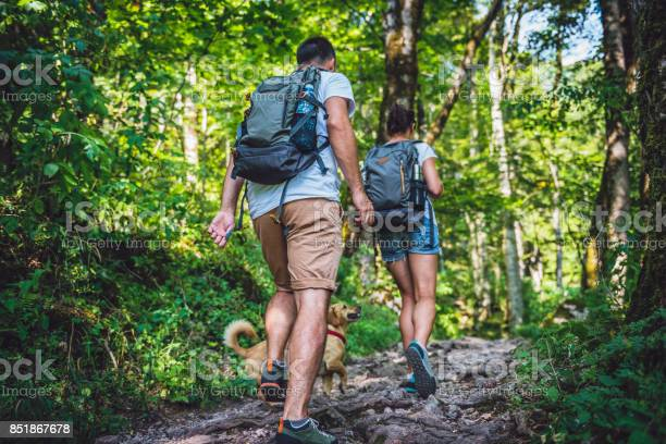 Photo of Couple with a dog hiking in forest