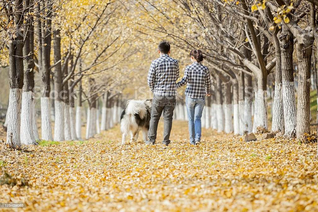 couple with dog outdoor royalty-free stock photo