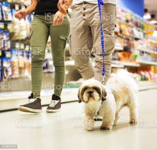Couple with dog shopping in pet store picture id513534707?b=1&k=6&m=513534707&s=612x612&h=c hz pyhjen8cy8srjgkdmlmqgau8movte9mvt o4sq=