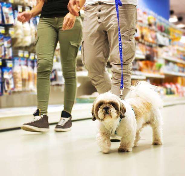 Couple avec chien Shopping dans le magasin pour animaux de compagnie - Photo