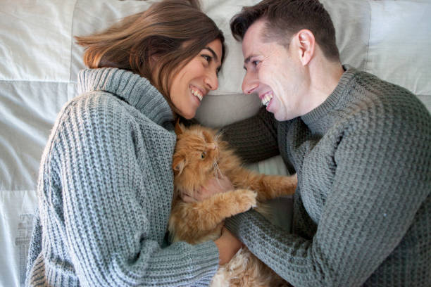 Couple with their cat in the middle of the bed picture id1062168142?b=1&k=6&m=1062168142&s=612x612&w=0&h=tfmmtxdavhlkfpgawl lr7vujcaq4rbecs yqdczzmu=