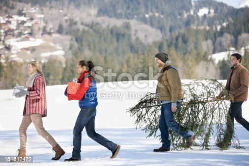 istock Couples and dog carrying fresh cut Christmas tree and gifts in snow 151812472