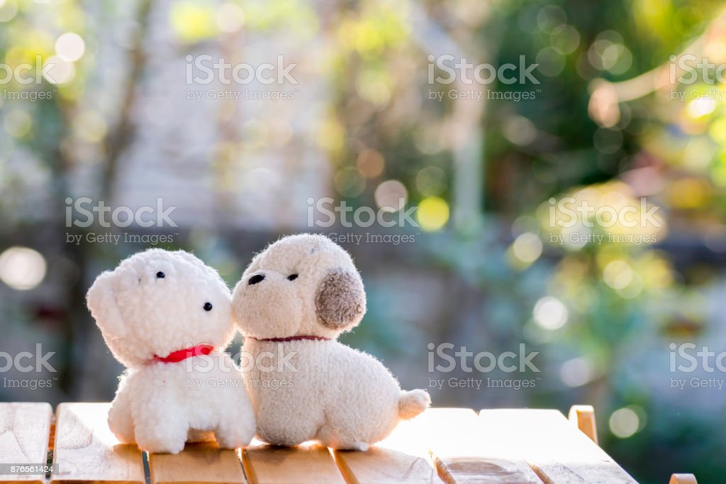 couples dog Dolls on wood and background bokeh. stock photo