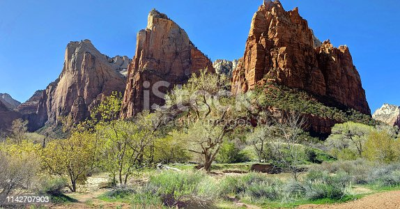 Court of the Patriarchs panoramic view in Zion National park in Utah in early springtime