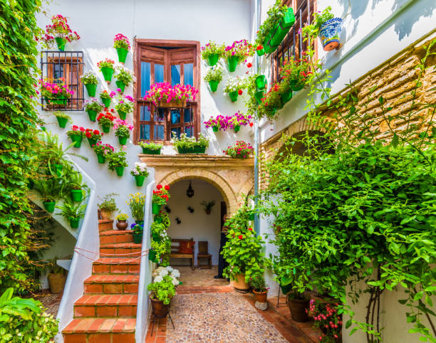 Courts with flower Cordoba, Spain - May 11, 2016: Traditional house and courts with flower in Cordoba, Spain cordoba spain stock pictures, royalty-free photos & images