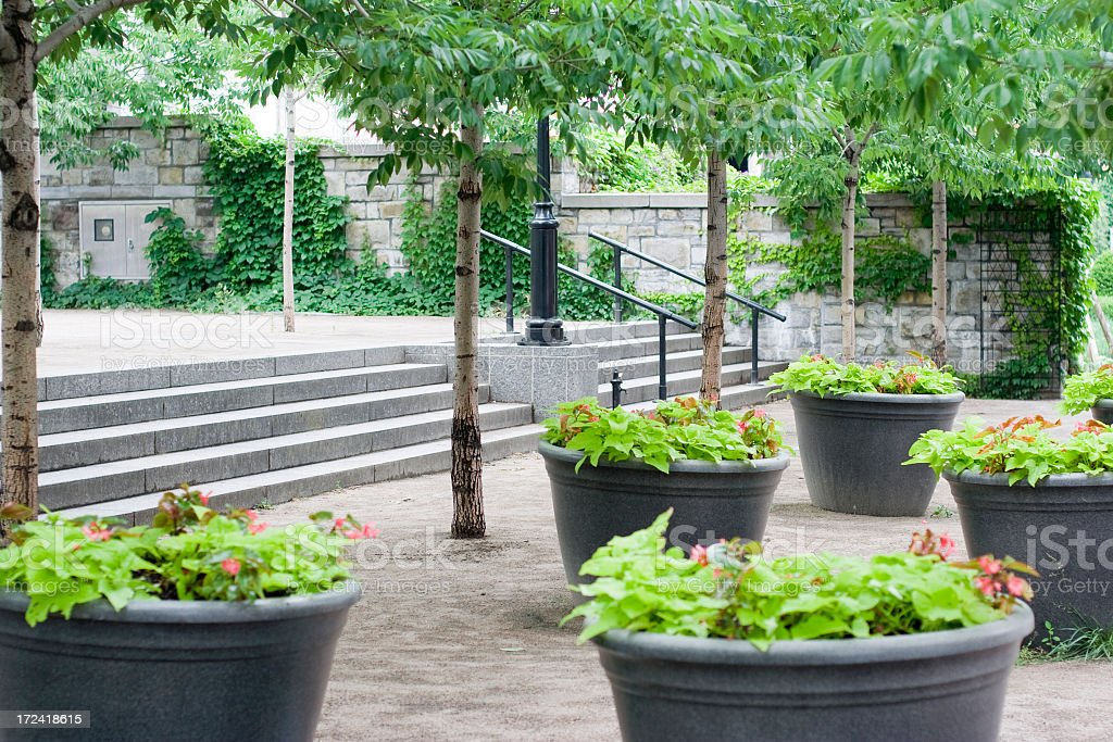 Courtyard with trees and potted plants stock photo