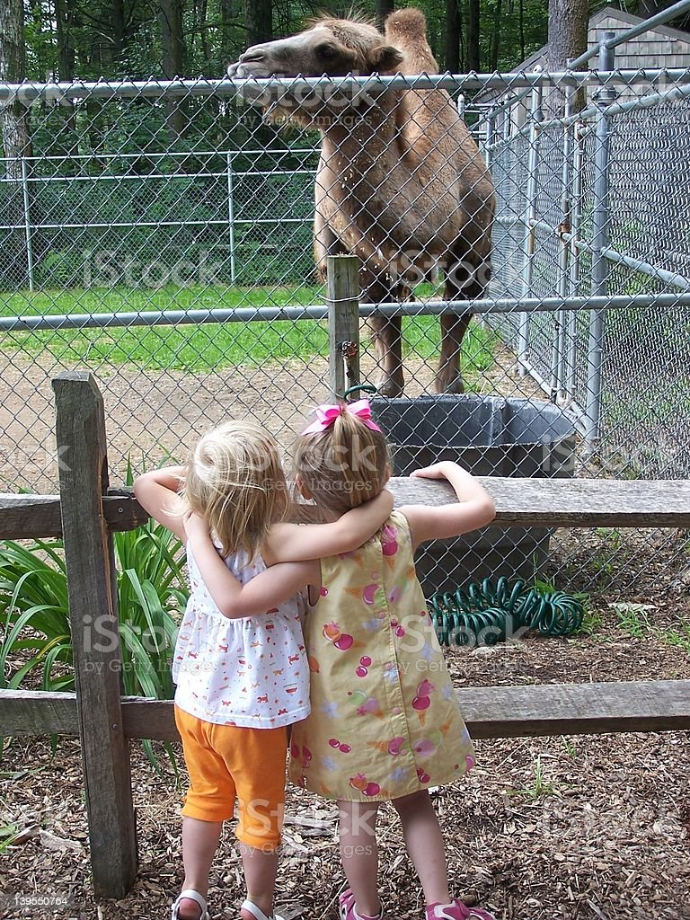 Cousins Day at the Zoo royalty-free stock photo