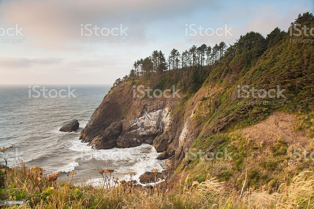 Cove at Cape Disappointment stock photo