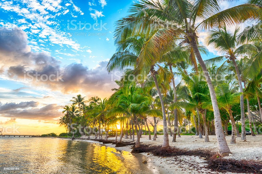 Anse Chamapgne stock photo