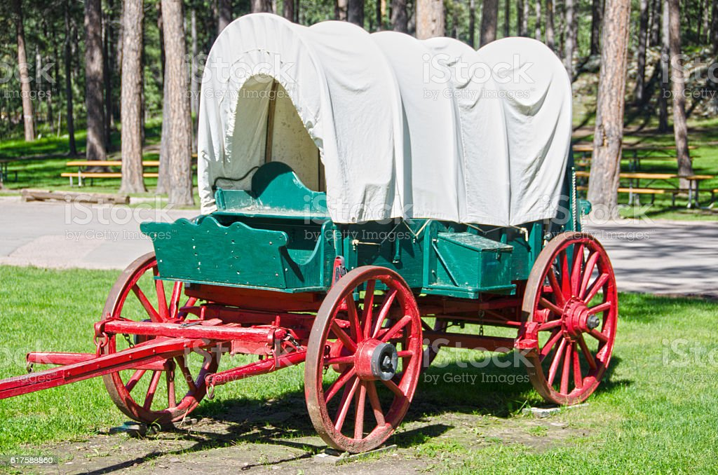Covered Wagon in Custer State Park stock photo