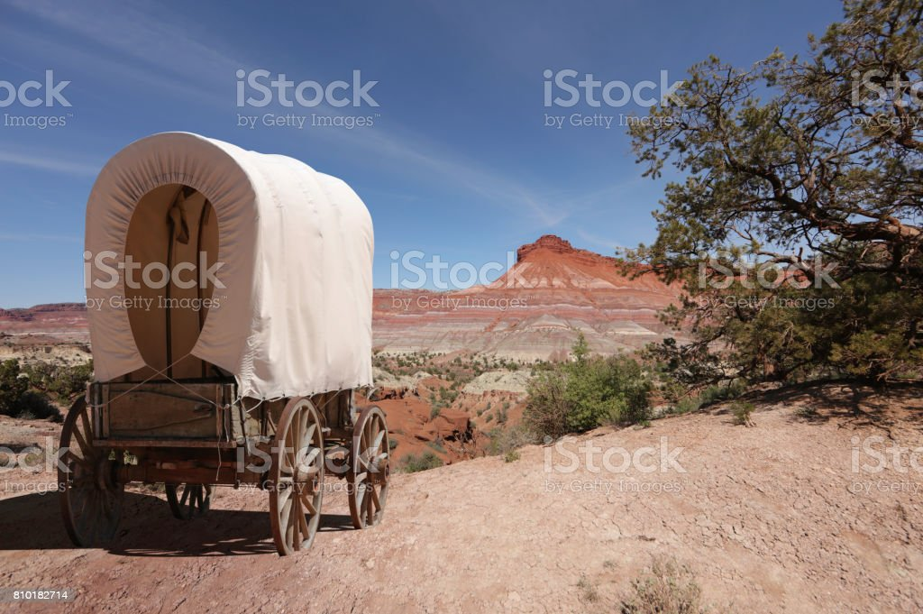 Covered wagon pioneer crosses wilderness stock photo