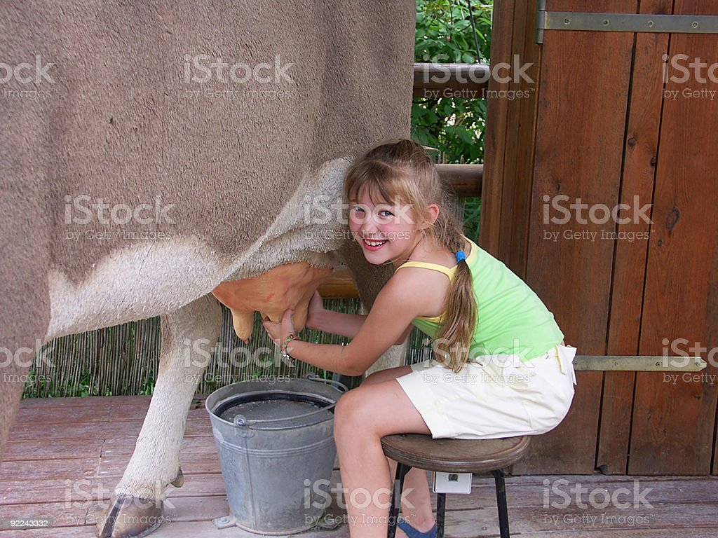 Cow and girl 01 stock photo