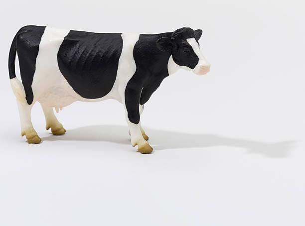 Cow on White stock photo