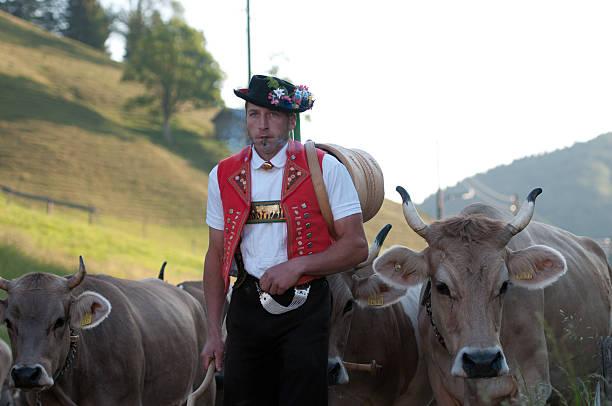 cow-parade - patrick hutter stock-fotos und bilder
