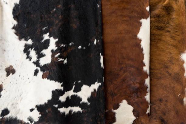 kuhfell muster textur - giraffen tattoos stock-fotos und bilder