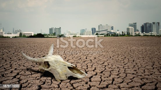 istock Cow skull in foreground of city in cracked dirt landscape 187917033
