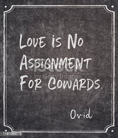 Love is no assignment for cowards- ancient Roman philosopher and poet Ovid quote written on framed chalkboard