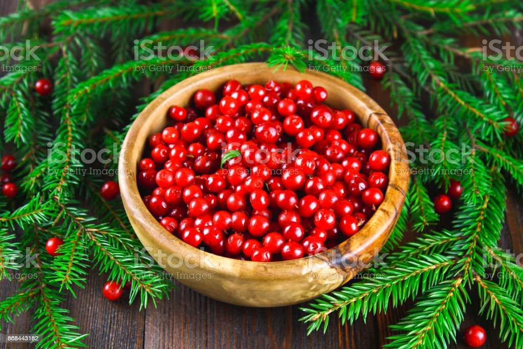 Cowberry, foxberry, cranberry, lingonberry in a wooden bowl on a brown wooden table. Surrounded by fir branches. stock photo