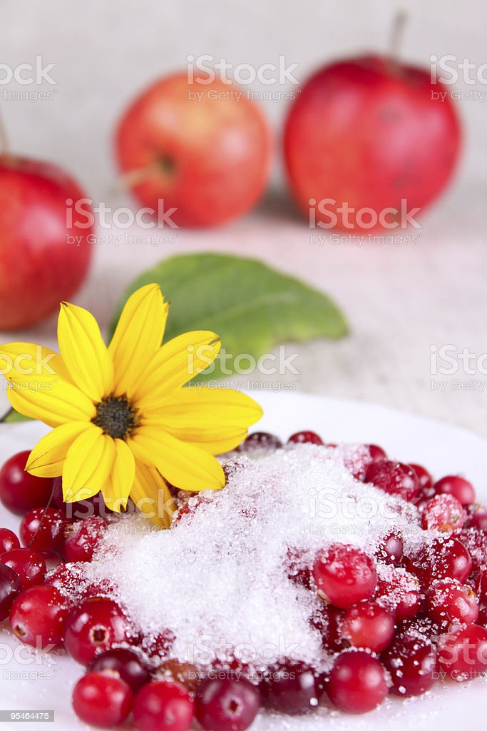 Cowberry in sugar on a white dish with flower royalty-free stock photo