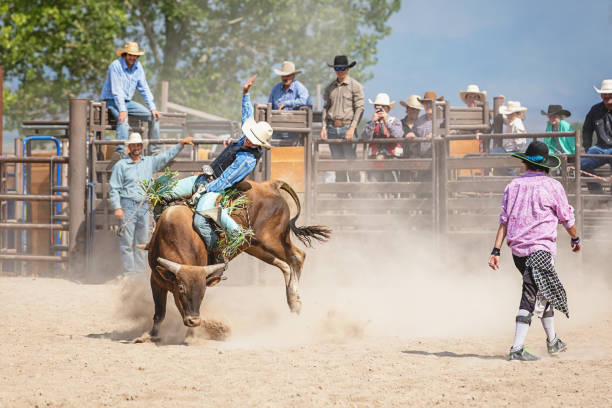 Cowboy American Bull Riding in Rodeo Arena stock photo