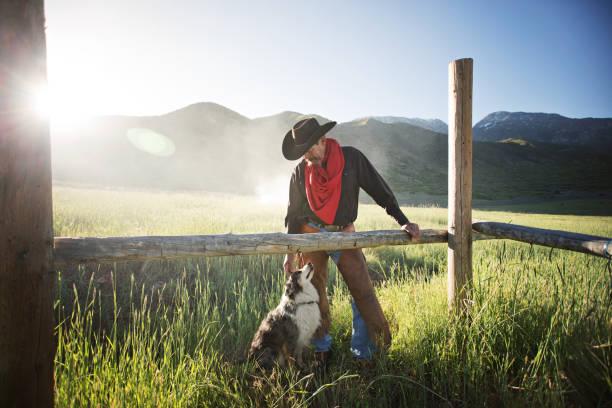 cowboy und seinem hund bonding bei sonnenaufgang - dressierter hund stock-fotos und bilder