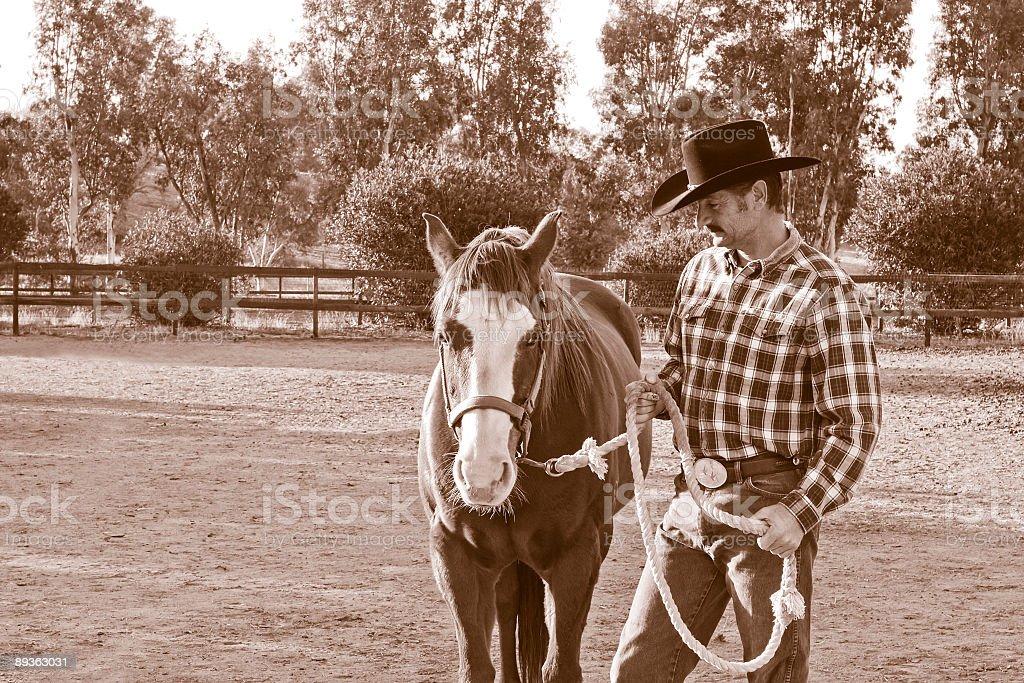 Cowboy and Horse Duotone royalty-free stock photo