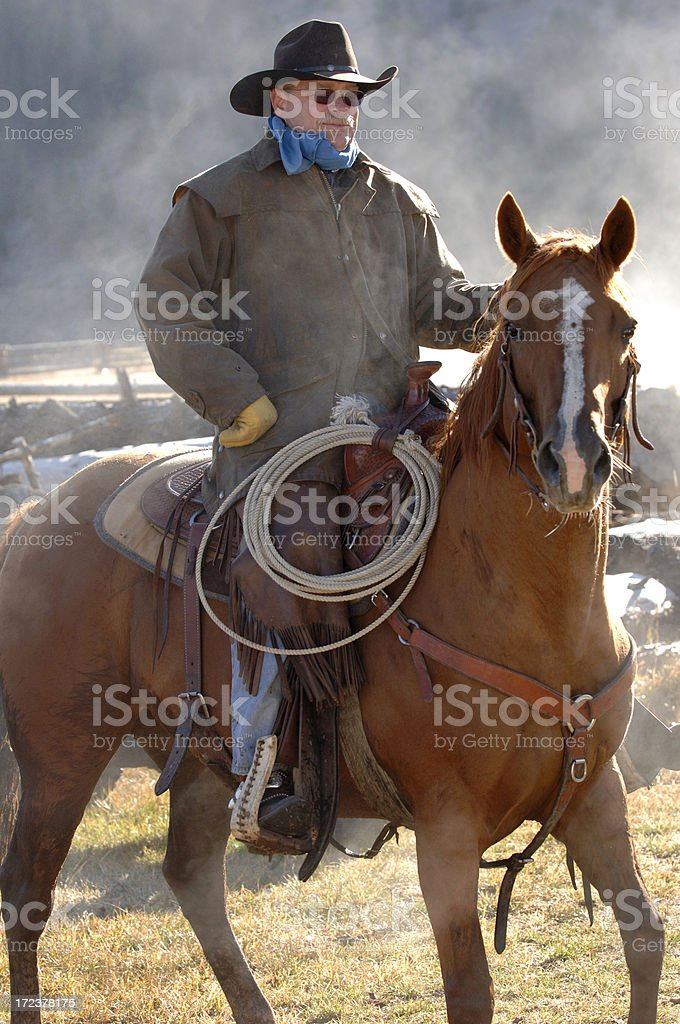 Cowboy and Horse in Dust royalty-free stock photo