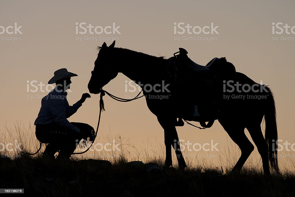 Cowboy and horse in silhouette stock photo